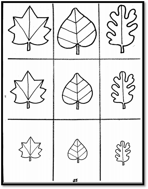 fall leaves and fall concentration a to z teacher stuff printable pages and worksheets. Black Bedroom Furniture Sets. Home Design Ideas