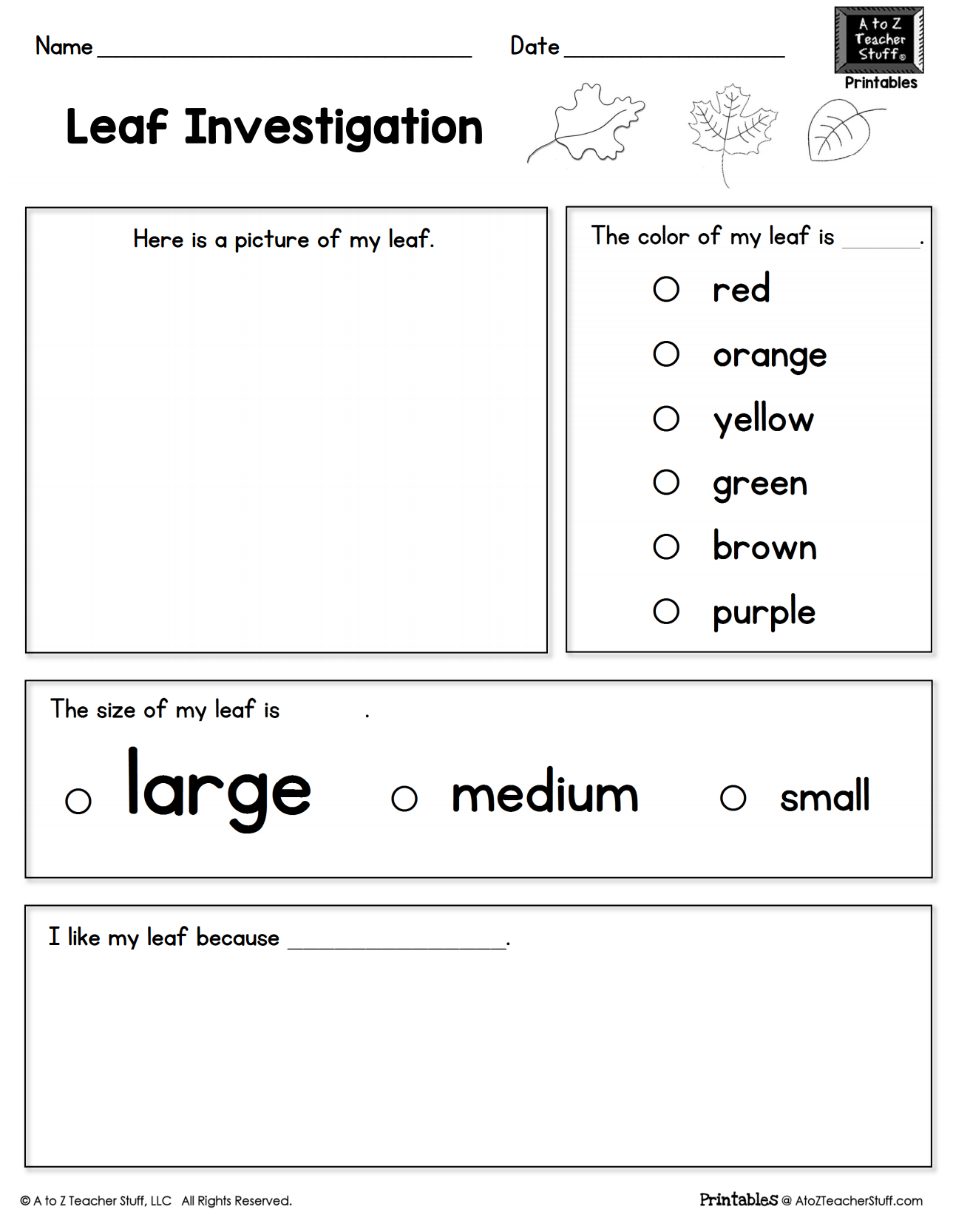 Leaf Investigation Printable Worksheet | A to Z Teacher ...