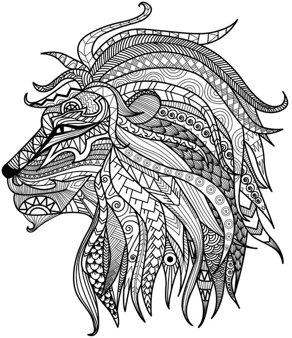 "Thanksgiving Coloring Pages Advanced : This detailed lion is part of our collection ""adult"