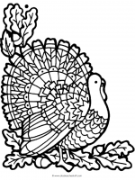 Thanksgiving Turkey Printable Pages And Worksheets
