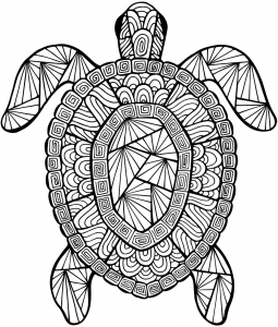 Genial Detailed Sea Turtle Coloring Page