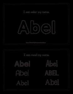 abel-book_2