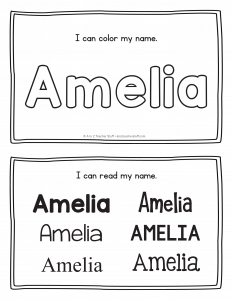 amelia-book_2
