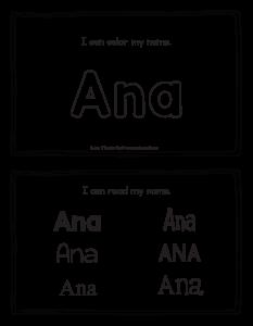 ana-book_2