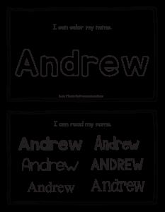 andrew-book_2