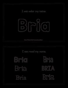 bria-book_2