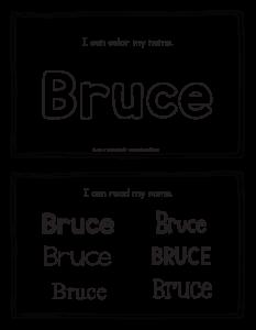 bruce-book_2