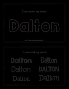 dalton-book_2