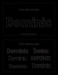 dominic-book_2
