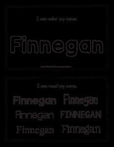 finnegan-book_2