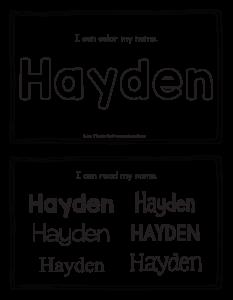 hayden-book_2