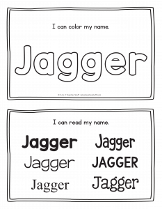 jagger-book_2