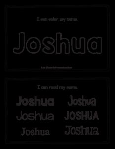joshua-book_2