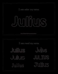 julius-book_2