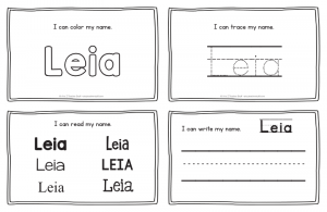 leia-book_2