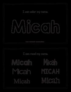 micah-book_2