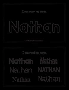 nathan-book_2