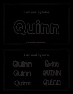 quinn-book_2