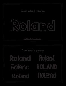 roland-book_2
