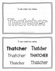 thatcher-book_2