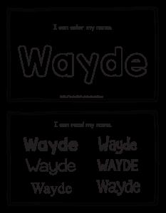 wayde-book_2