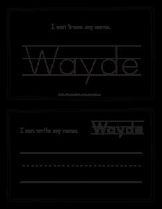 wayde-book_3