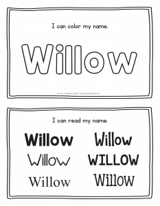 willow-book_2